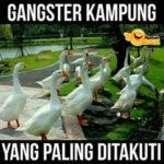 Gangster yang Ditakuti