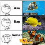 Efek film Nemo