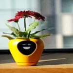 Pot Unik Pintar Ini Bisa Ekspresikan Kondisi Tanaman